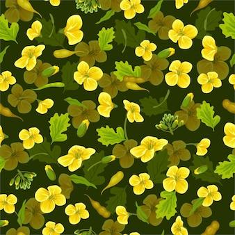 패턴 유채 꽃 카놀라 브라 시카 나 푸스