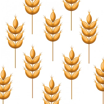 Pattern wheat leaves isolated icon