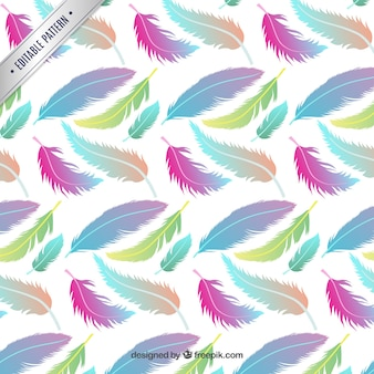 Pattern with colorful feathers