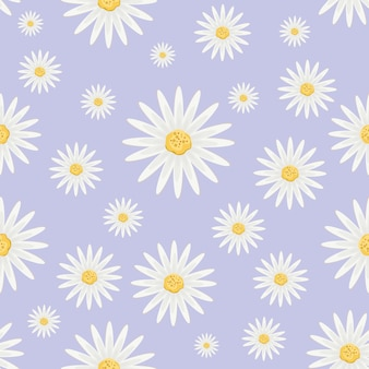 Pattern with flowers of daisy
