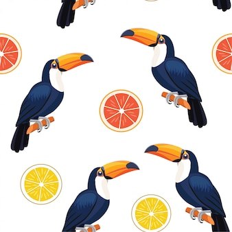 Pattern with toucan and citrus.