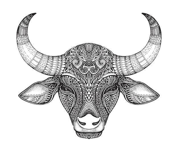 Patterned head of the bull. hand drawn vector illustration in ornate doodle style.