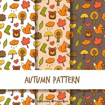 秋の絵の模様
