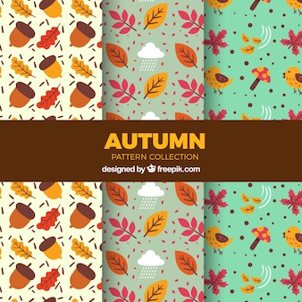 Patterns with colorful autumnal elements