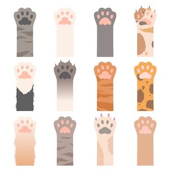 고양이 발. 귀여운 동물 손 야생 고양이 발톱 만화 캐릭터. 그림 고양이 발, 동물