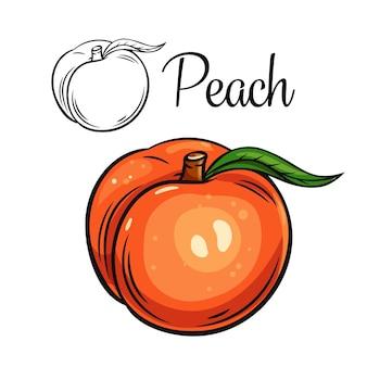 Персик рисунок значок