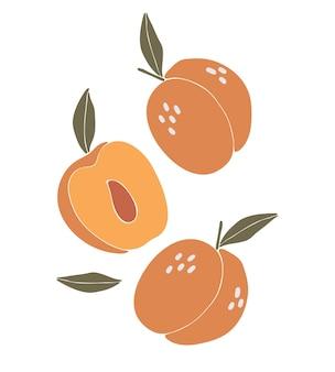 桃の果実自由奔放に生きるイラストのコンセプト