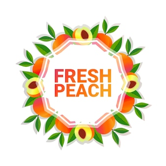 Peach fruit colorful circle copy space organic over white pattern background, healthy lifestyle or diet concept