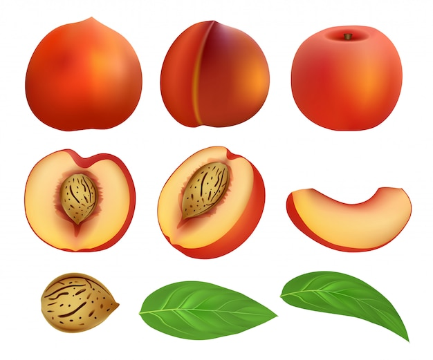 Peach slices fruit leaf mockup set