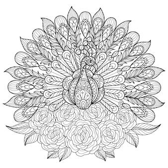 孔雀とバラ。大人の塗り絵の手描きスケッチイラスト。