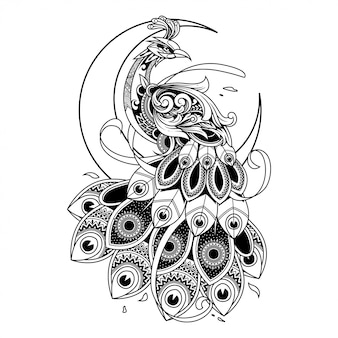 Peacock doodle ornament illustration, tattoo and tshirt design