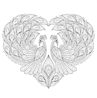 Peacock heart. hand drawn sketch illustration for adult coloring book