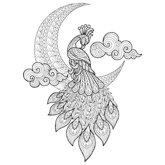 Peacock and moon hand drawn sketch illustration for adult coloring book