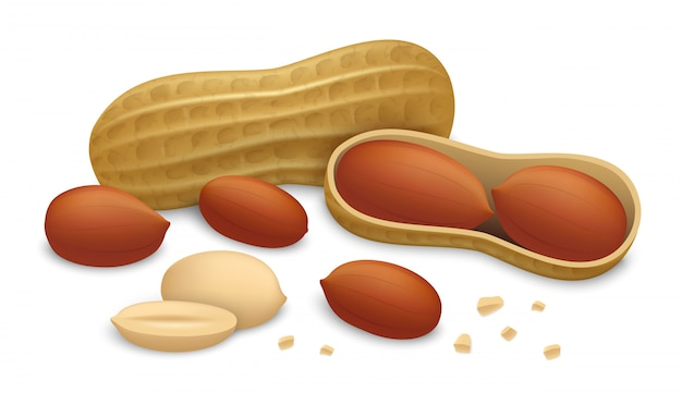 Peanut icon set