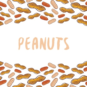 Peanuts background. nuts hand drawn vector
