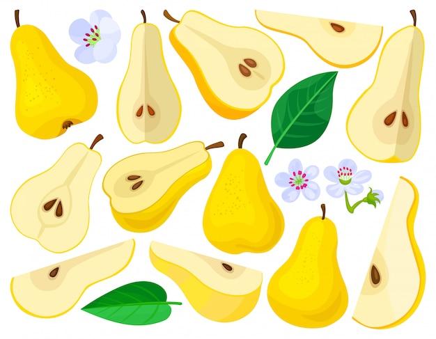 Груша мультфильм установить значок. иллюстрация фрукты на белом фоне. мультфильм установить значок груша.