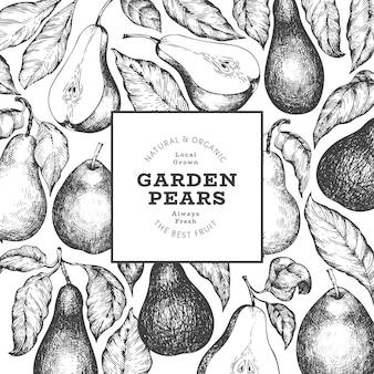 배 디자인 템플릿입니다. 손으로 그린 정원 과일 그림입니다. 새겨진 스타일 정원 복고풍 식물입니다.