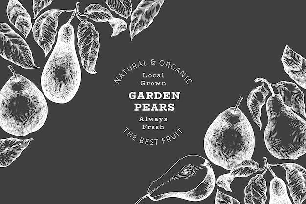 배 디자인 템플릿입니다. 분필 보드에 손으로 그린 정원 과일 그림입니다. 레트로 보태니컬 .