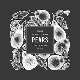 Pear design template. hand drawn vector garden fruit illustration on chalk board.