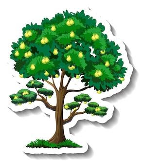 白い背景の上の梨の木のステッカー