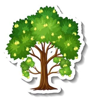 Pear tree sticker on white background