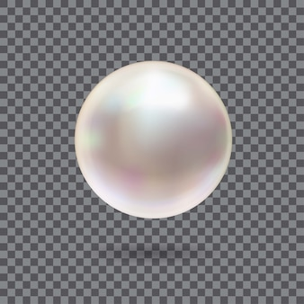 Pearl 3d shining realistic isolated on transparent background.