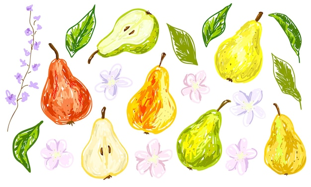 Pears flowers and leaves set of colorful bright elements collection for trendy design