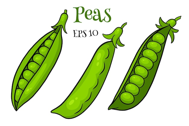 Peas set. closed and open green pea pods. in a cartoon style. vector illustration for design and decoration.