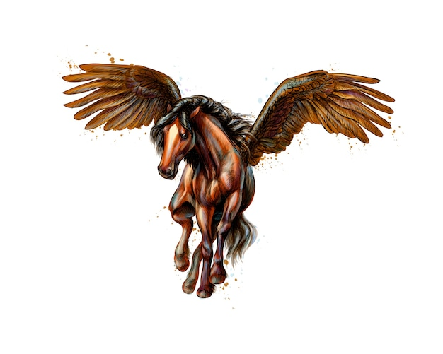 Pegasus mythical winged horse from splash of watercolors. hand drawn sketch.  illustration of paints