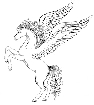 Pegasus taking off front