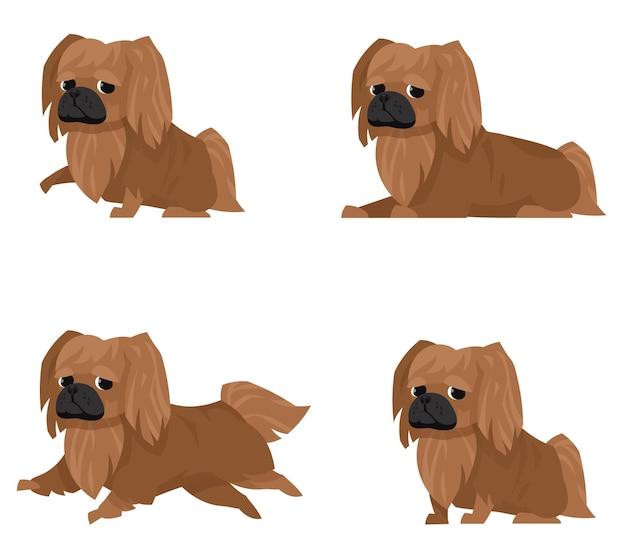 다른 포즈의 페키니즈. 만화 스타일 일러스트에서 아름다운 애완 동물