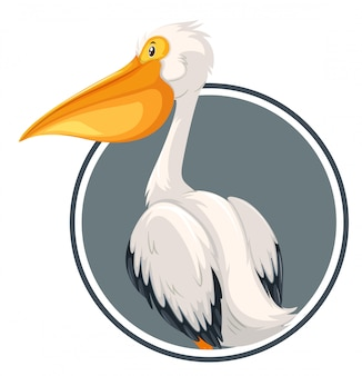 Pelican on circle banner