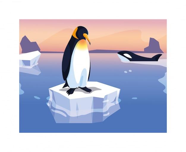 Penguin on an ice floe drifting