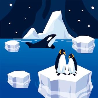 氷山とシャチの海の北極の夜のパノラマイラストのペンギン