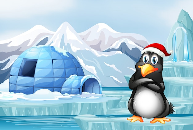 Penguin wearing christmas hat