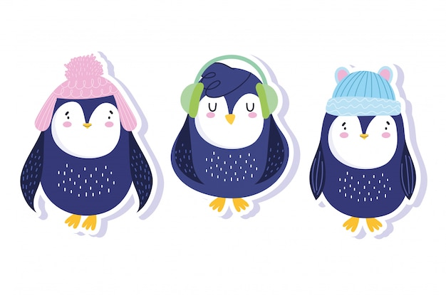 Penguins with winter hats and earmuffs