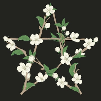 Pentagram sign made with branches from a blooming tree. hand drawn botanical white blossom on black background. vector illustration.