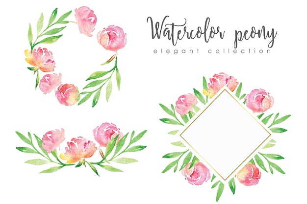 Peony floral ornaments and frames