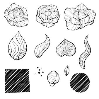 牡丹の花と葉の線画。ベクトル手描きのアウトライン花セット。シンプルな植物の牡丹、枝とベリーのcountur。黒インクのスケッチ。タトゥー、招待状、グリーティングカード、装飾に最適