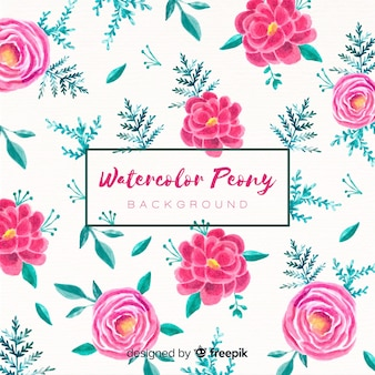 Peony flowers background in watercolor style