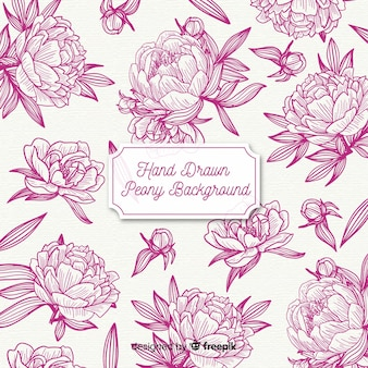 Peony flowers background