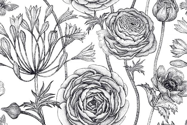 Peony flowers illustration