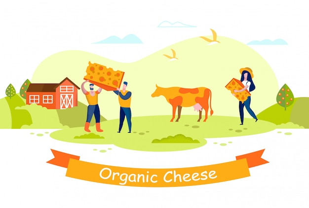 People cheese factory. cow grazes on meadow. farm.