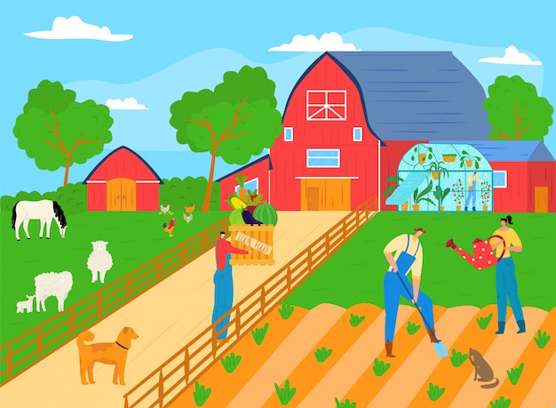 People farmer work at agriculture plant farm, man woman character farming gardening concept  illustration. organic harvest at garden, worker crop  plantation. working at rural field.