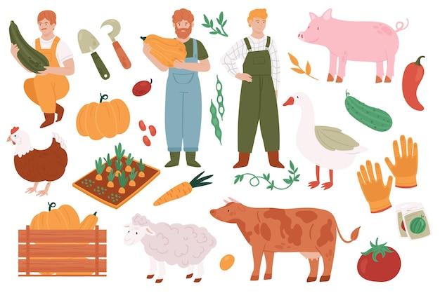 農業を営む人々は、農業市場で販売するために有機収穫野菜を栽培しています