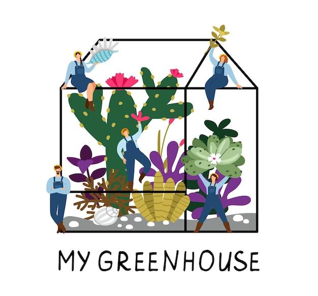 温室の人々。多肉植物を持っている小さな農民は花を植えます。庭の労働者のベクトルの概念