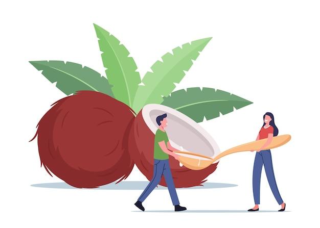 사람들은 코코넛 오일 개념을 사용합니다. 녹색 잎을 가진 코코넛 근처에 거대한 숟가락을 가진 작은 남성과 여성 캐릭터