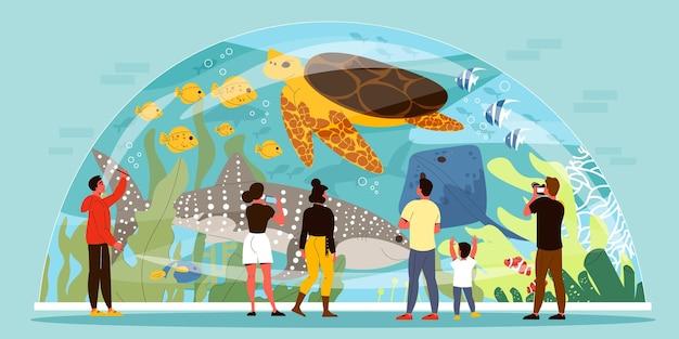 ドームフラットの形をしたガラスの水槽の中を泳ぐ海の動物を見たり写真を撮ったりする人々
