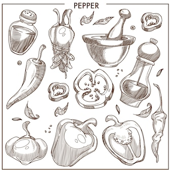Pepper of all kinds isolated monochrome illustrations set