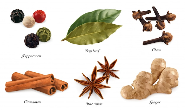 Peppercorn, bay leaf, dried cloves, cassia cinnamon, star anise, ginger root. 3d realistic objects